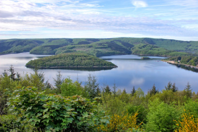 © Nationalpark-Eifel